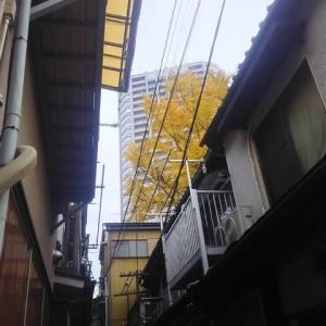 佃天台地蔵尊の初冬/2019年