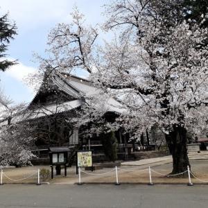 上野寛永寺から谷中霊園へ