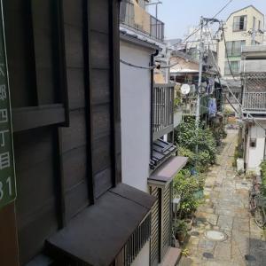 菊坂の石段から/2020年梅雨明け