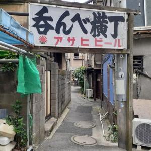 京成立石「呑んべ横丁」の紫陽花