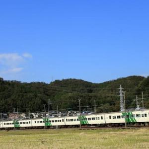 駿豆線を往く185系踊り子号