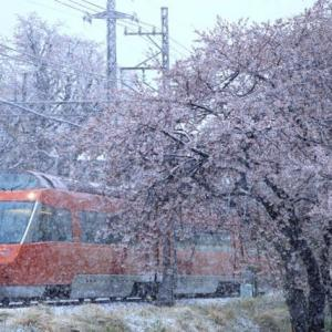 桜隠しの雪とロマンスカーGSE