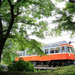祝!箱根登山鉄道全線開通