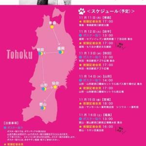 191111 れいわ新選組を応援する。山本太郎代表の全国遊説をほぼすべて観続けている。