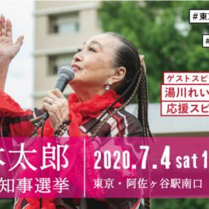 200704 頑張れ山本太郎!! 「湯川れい子さんの応援演説」 ※良いスピーチです。