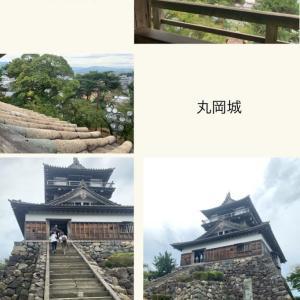 【坂井市】柴田勝家が甥に築城させた丸岡城へ