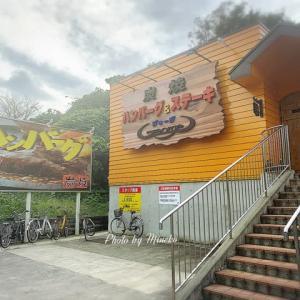 【八王子】炭焼きハンバーグ&ジョージのデミグラスソースのハンバーグ
