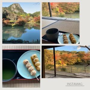【佐賀】九州最大の桜のライトアップの御船山楽園の紅葉を愛でる