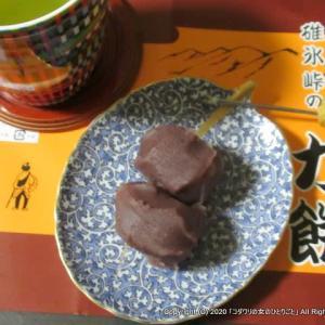 【長野・横川】峠の釜めしのおぎのやの「力餅「」