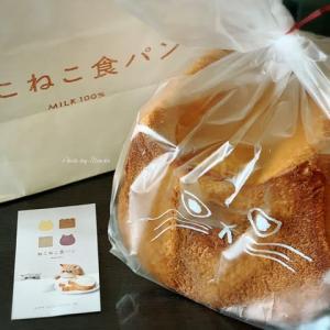 【高尾】猫顔型のねこねこ食パン | MILK 100% SHOKUPANを買いに「イーアス高尾」へ
