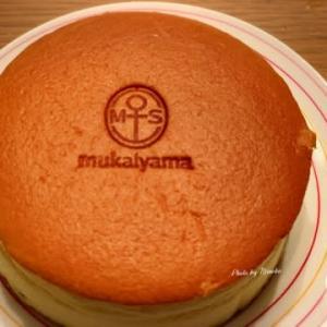 【福島県郡山市】向山製作所の 出来たてチーズケーキ