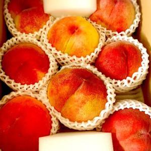 【笛吹市】田中農園の桃が来た🍑