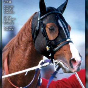 2020 第65回有馬記念 レープロ