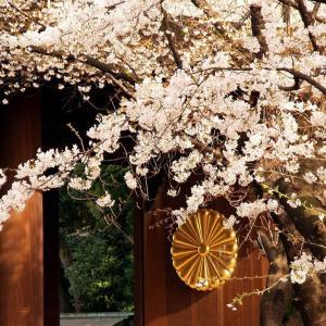 菊花賞 皇室の秋の沸騰