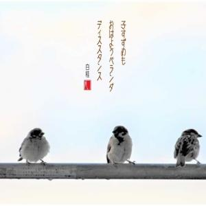 小雀のベランダディスタンス