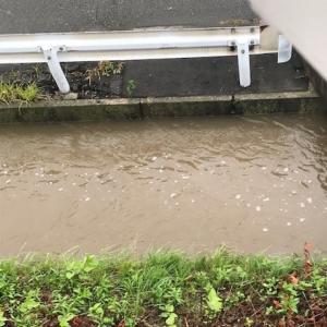 2020/07/11 大雨