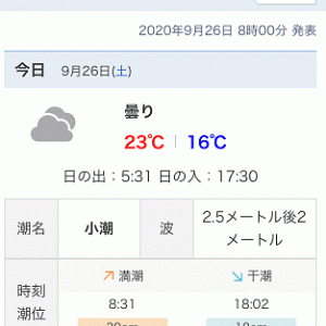 2020/09/25 某サーフ 夕まずめ 坊主 9/26 朝まずめ ヒラメ×1