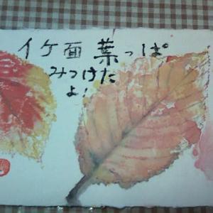 紅葉が深まり冬支度。