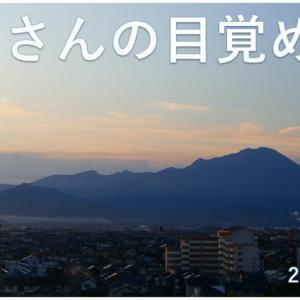 大山さんの目覚め 動画あり(0622)