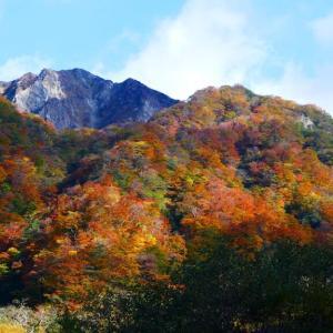 大山の紅葉 10月26日 ユートピア・三鈷峰コース