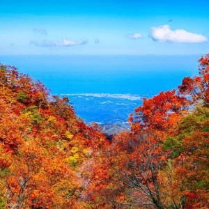 大山の紅葉 10月26日 #2 ユートピアコース