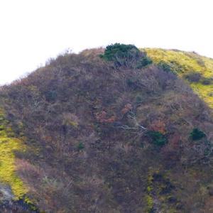 重い荷物を背負って山道を登るがごとし・・