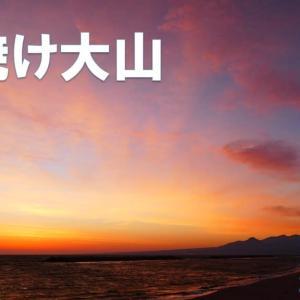 達磨太陽(朝陽)と朝焼け大山さんとアンネのバラが咲いた 動画有り 2021年だるま朝日④