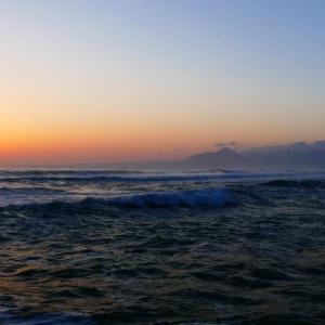 今朝の大山とアンネの薔薇
