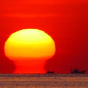 達磨太陽(朝陽)2021年度 特集