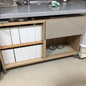 ネコご飯スペースを移動する。