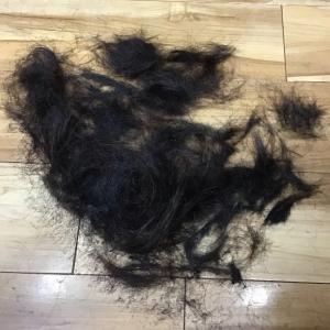 髪の毛アート☆薔薇と🌹
