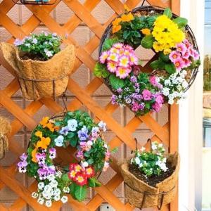 コロナ騒ぎでも花は咲く🌷花苗リース満開