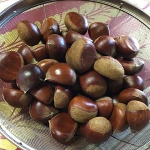 久々に栗甘納豆🌰作ったよ🥰