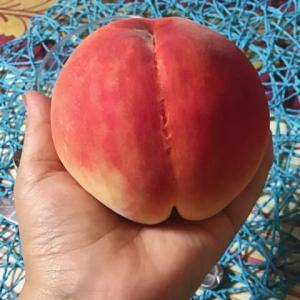 おうちで🍑桃パフェ❤️