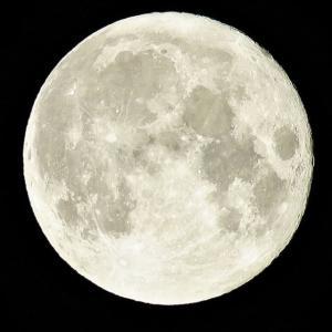 中秋の明月&🌕満月❣️