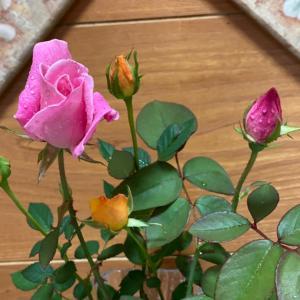 花があるとやはり華やかです