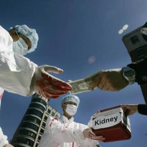 西側諸国メディアが中国の臓器強制摘出を大々的に報道