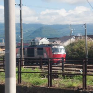 Diesel Locomotive#262