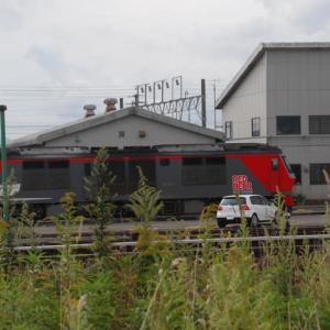 Diesel Locomotive#264