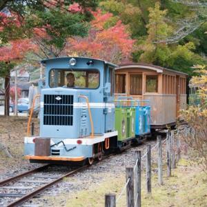 Diesel Locomotive#466