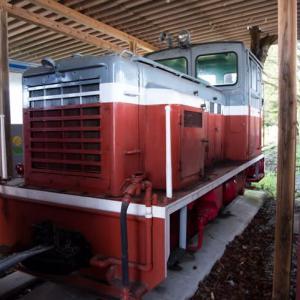 Diesel Locomotive#481