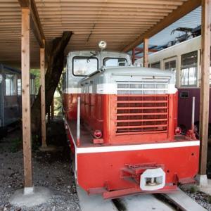Diesel Locomotive#482
