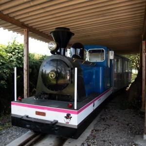 Diesel Locomotive#483