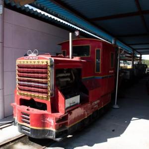 Diesel Locomotive#489