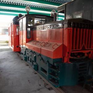 Diesel Locomotive#494