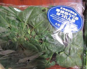 壮瞥のちぢみホーレンソウ・・・野菜が豊富