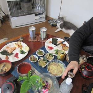 ウド料理&気紋別川沿いの八重桜
