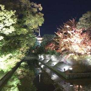【京都】紅葉の季節、東寺のライトアップへ