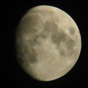 月齢10.4の月0731とガリレオ衛星の配置