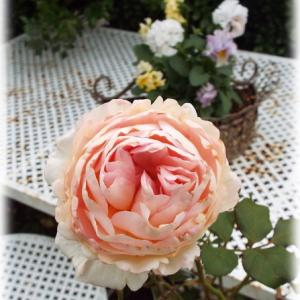 花苗植えしてます ガラスのバラで出来た庭